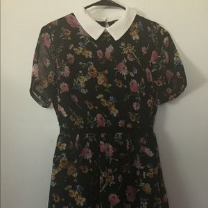 New Floral Peter Pan Collar Mini Dress